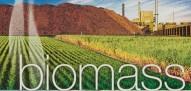 Οικονομικά οφέλη από την καύση βιομάζας